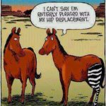 i can't say I am entirely amused with my hip replacement.jpg